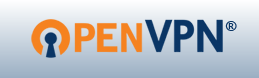 OpenVPN is commonly used to establish virtual private networks world-wide